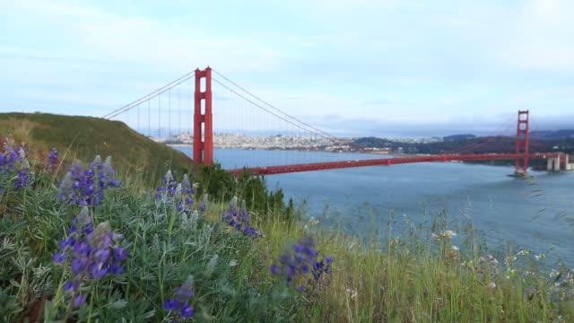Golden Gate Bridge video