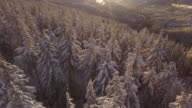 Golden Hour Drone Shot of Winter Snow on Baring Mountain in Sky Valley video