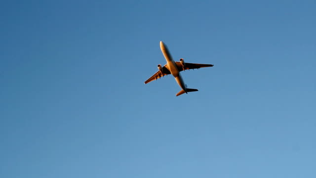 Golden jet. video