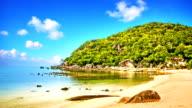 Golden sand beach video