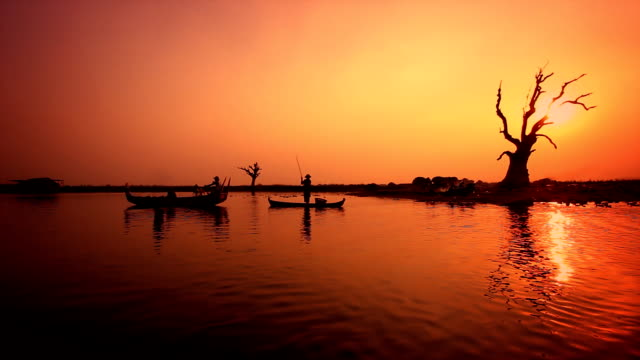 Golden sunset, boats, a tree, reflected on the river. video