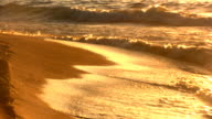 Golden Waves video