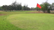 Golf Course Putting Green with flag video