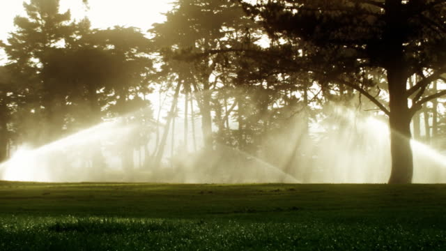 Golf Course Sprinklers at Sunrise video