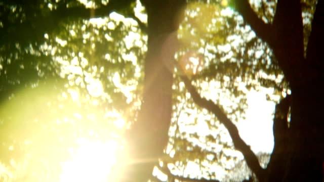 Golf Course /Tilt/Sun video