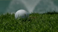 Golf hit, slow motion ECU video