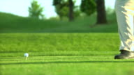 1080-P- Golf swing and hit video