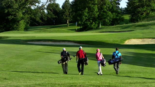 WS Golfers Walking On The Golf Course video