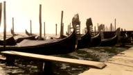 Gondolas anchored on Grand Canal in Venice, Italy video