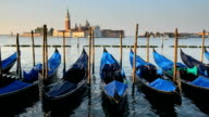 Gondolas at Dusk, Venice, Italy video