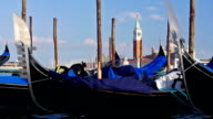 Gondolas in Venice. video