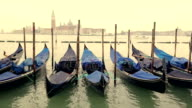 Gondolas in Venice video