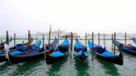 Gondolas on Canal Grande in Venice , Italy video