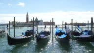 Gondolas on the Venetian lagoon with sunlight, Venice - Italy video