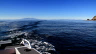 Gone fishing! Motor boat view looking back. New Zealand. video