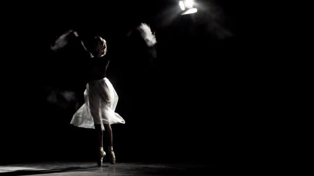 Graceful Girl Practicing Ballet video