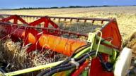 Grain harvester working in the field video