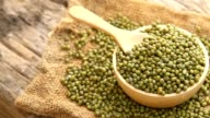 Grain mung bean video