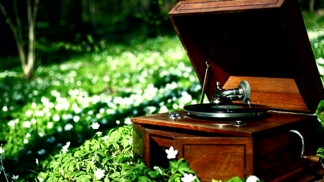 Gramophone in the forest, Spring – Stock video video