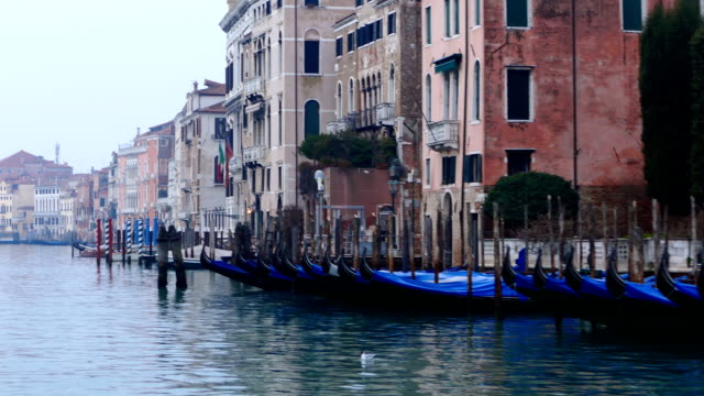 Grand canal timelapse strat at gondolas video