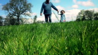 Grandfather and Granddaughter Walking In A Spring Field video