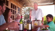 Grandfather toasting his family at a meal video