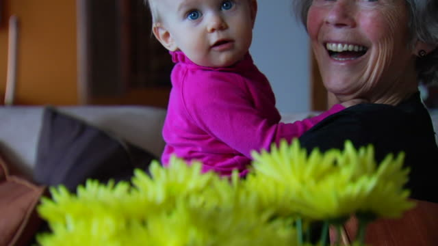 Grandmother and Granddaughter 2 video