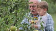 Grandpa and me video