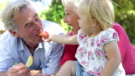 Grandparents And Granddaughter Enjoying Picnic Together video