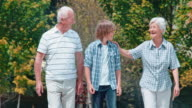SLO MO Grandparents and grandson enjoying their walk in the park video