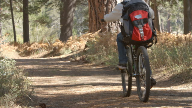 Grandparents and kids cycling on forest trail, slow motion video