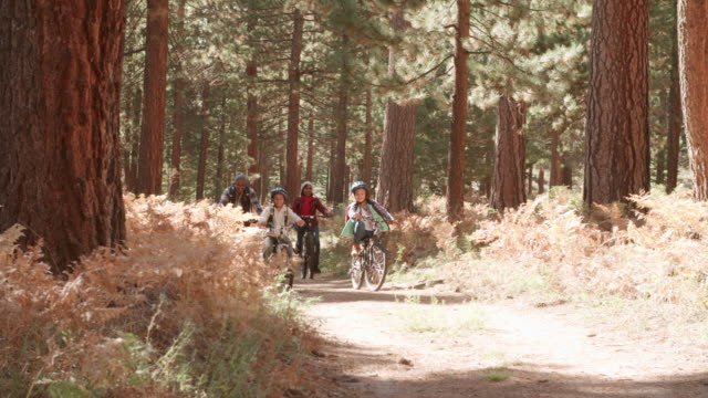 Grandparents cycling with grandchildren in a forest video