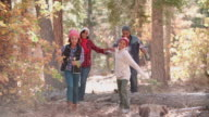 Grandparents hiking in a forest with grandchildren video