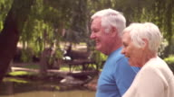 Grandparents walking in a park video