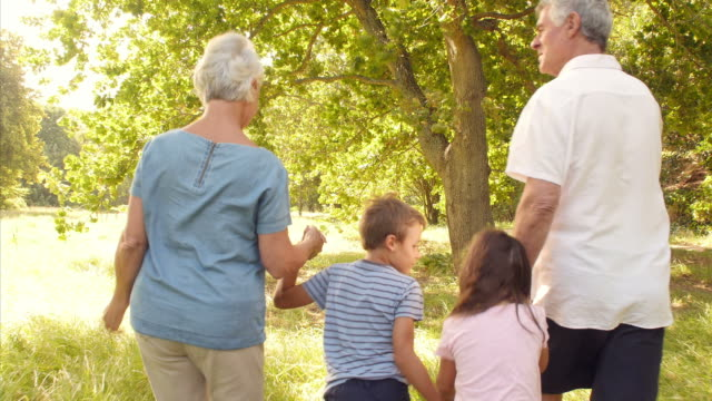 Grandparents walking in the countryside with their grandchildren video
