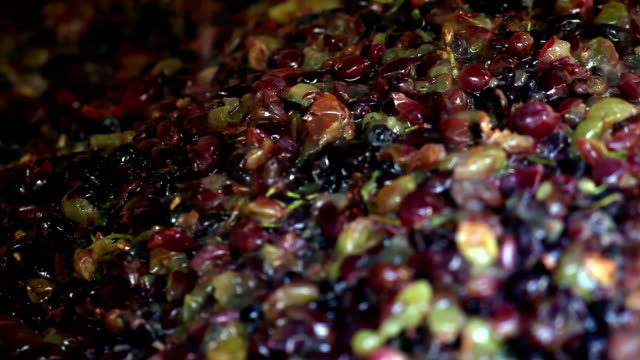 grape after pressing video