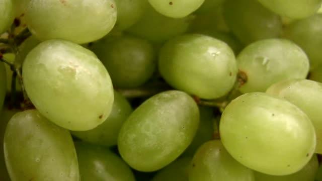 Grape green berries rotating video