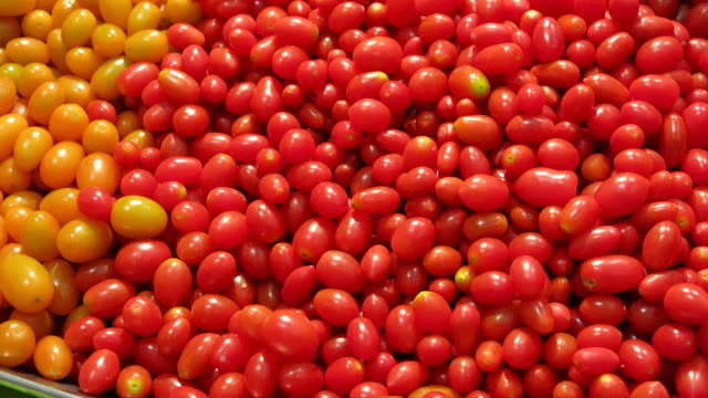 Grape tomatoes video