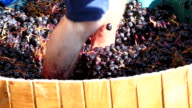 grapes crushed legs video