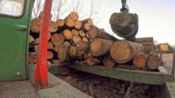 TIME-LAPSE Grapple crane moving logs at sawmill video