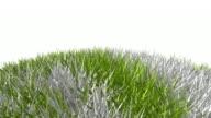 Grass Globe HD | Asia,Africa & Europe video