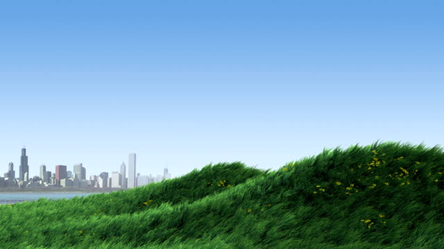 Grass on Hill by City video