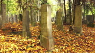 Grave at the cemetery video