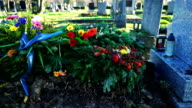 Grave video