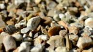Gravel Detail video