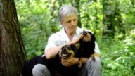 gray-haired man petting his dogs video