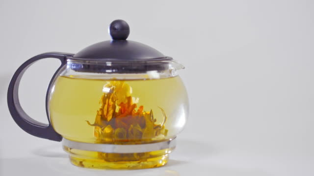 Green Chinese tea flower bud blooming in glass teapot video
