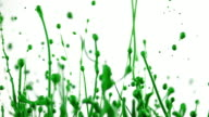 SLO MO Green color lifted into air creating beautiful shapes video