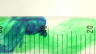 Green dye drops in a test tube. video