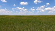 green field blue speedy sky video